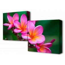 Набор из 2 панно (100х50 см) Цветок BT S-4115H