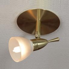 Встраиваемый светильник Downlights LSL-0390-01