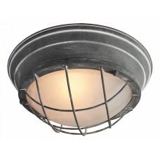 Накладной светильник LSP-9881