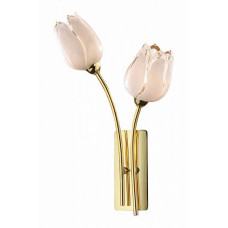 Бра Tulip 1815/2W