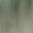олово (6)