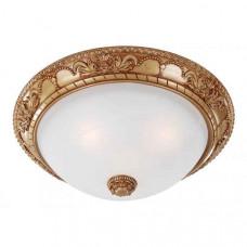 Накладной светильник Plafond 1447-3C