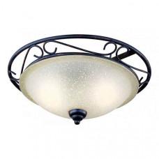 Накладной светильник Rustica II 4413-2