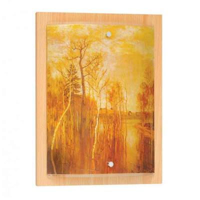 Накладной светильник Галерея 1 385020101
