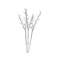 Яблоня световая (90 см) Viridis 39102