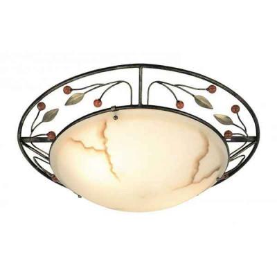 Накладной светильник Savanna 44130-2