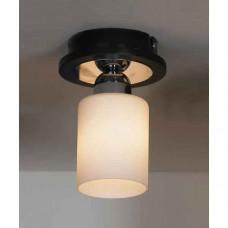 Светильник на штанге Caprile LSF-6107-01